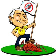 How To Establish Successful Pest Control Business?