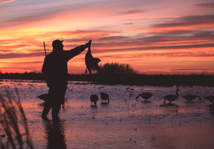 Duck Hunting Trips