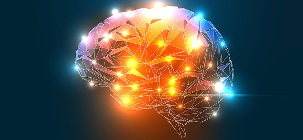Train Your Whole Brain To Accelerate Your Learning