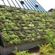 How To Create An Environment Friendly Roof System