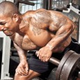 How To Enhance Your Muscle Tissue?