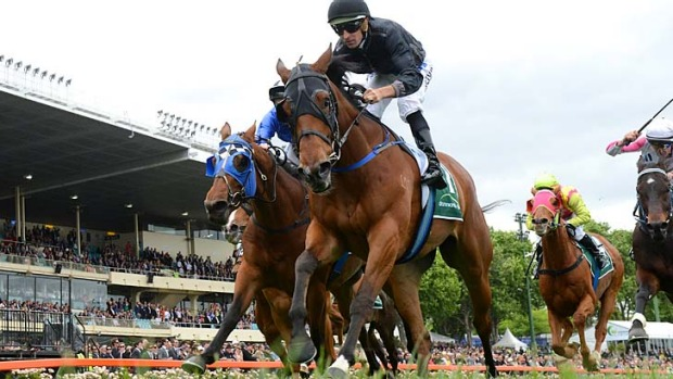 Ultimate Goal Of Cox Plate Racing